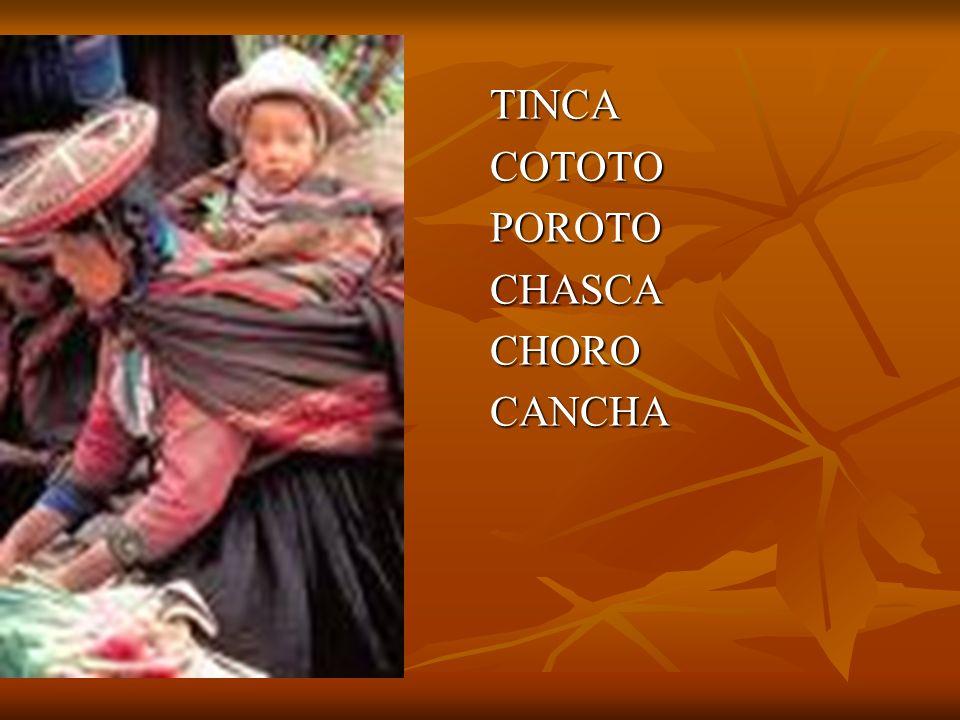 TINCA COTOTO POROTO CHASCA CHORO CANCHA