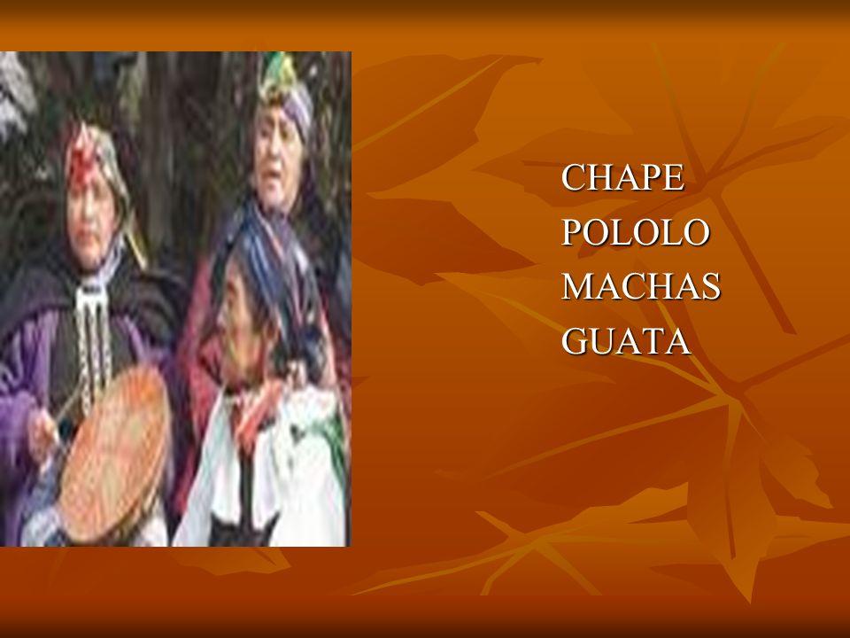 CHAPE POLOLO MACHAS GUATA