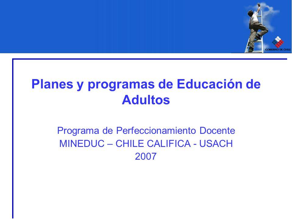Planes y programas de Educación de Adultos