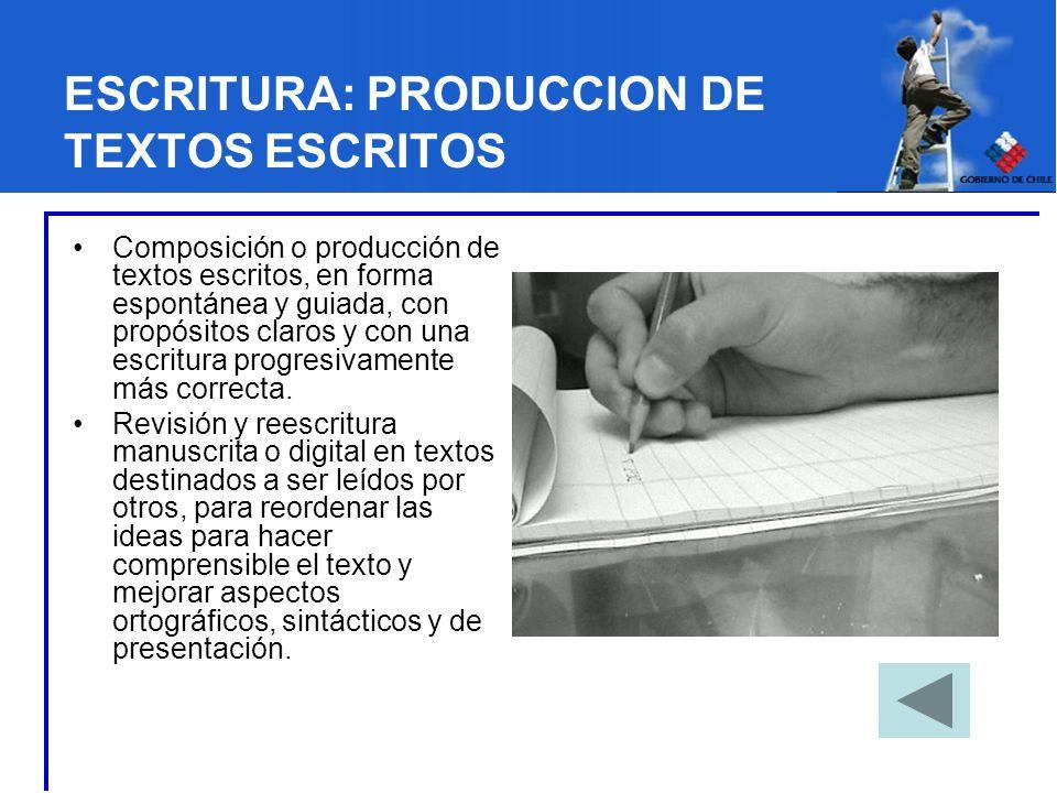 ESCRITURA: PRODUCCION DE TEXTOS ESCRITOS