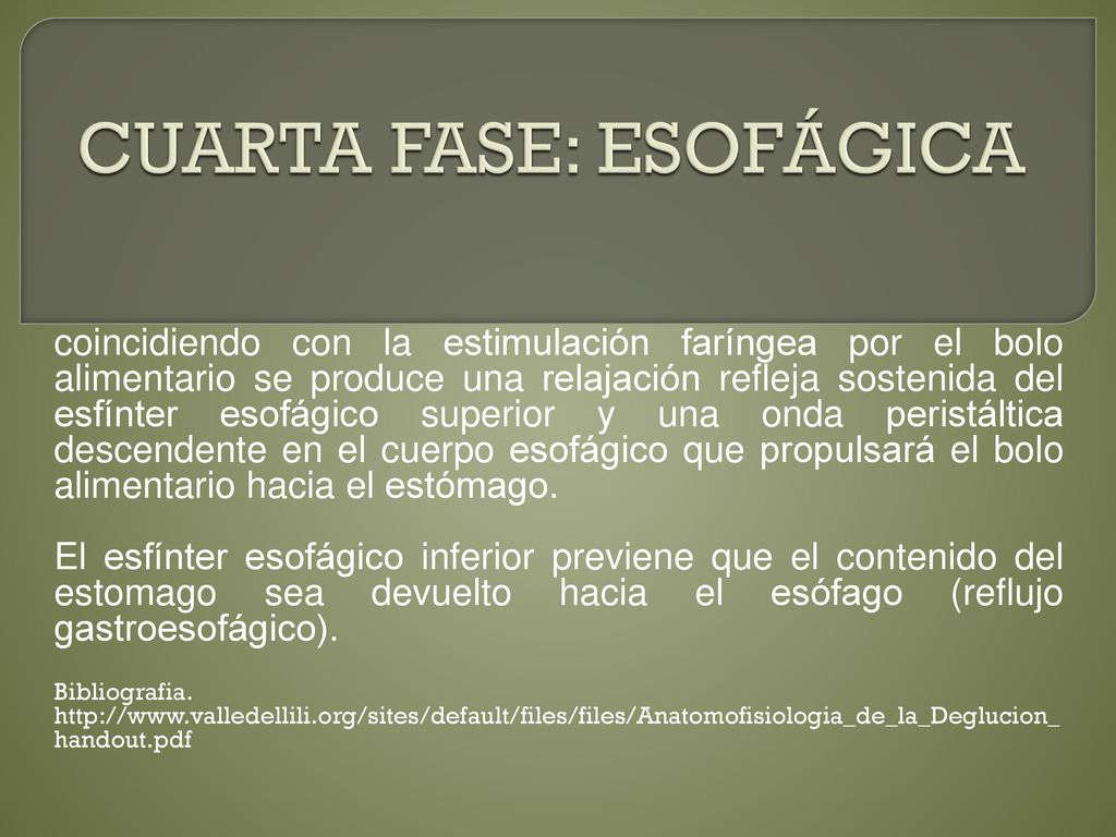 Beautiful La Cuarta Fase Descargar Gallery - Casa & Diseño Ideas ...