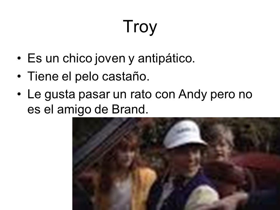 Troy Es un chico joven y antipático. Tiene el pelo castaño.