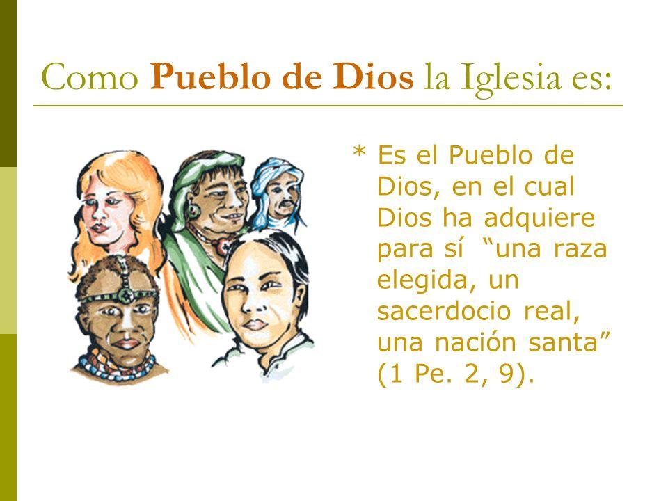 Como Pueblo de Dios la Iglesia es: