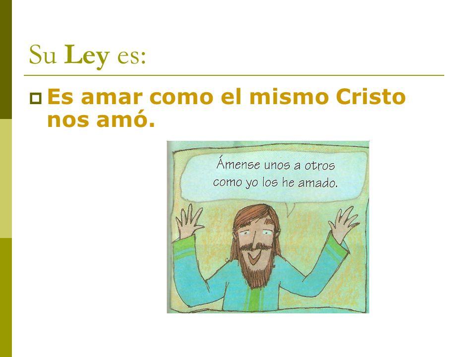 Su Ley es: Es amar como el mismo Cristo nos amó.