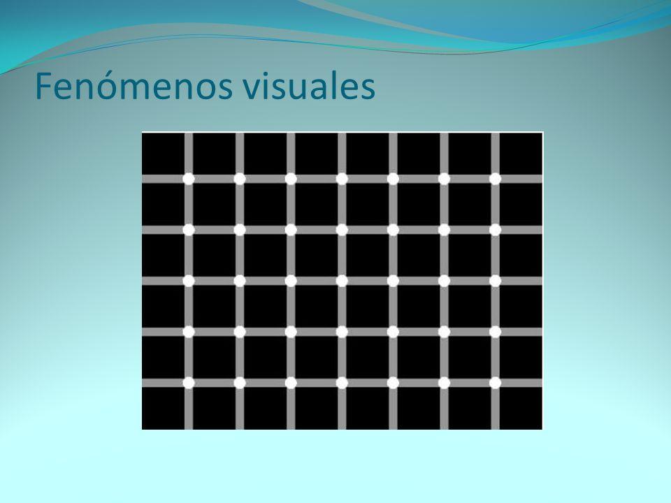 Fenómenos visuales
