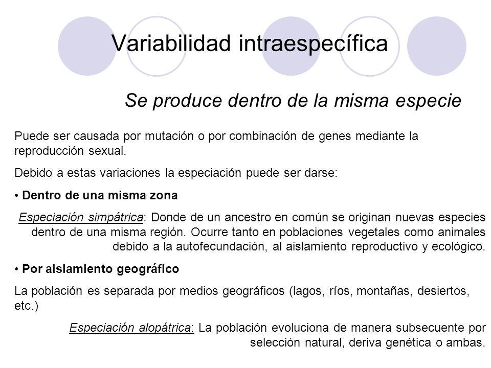 Variabilidad intraespecífica