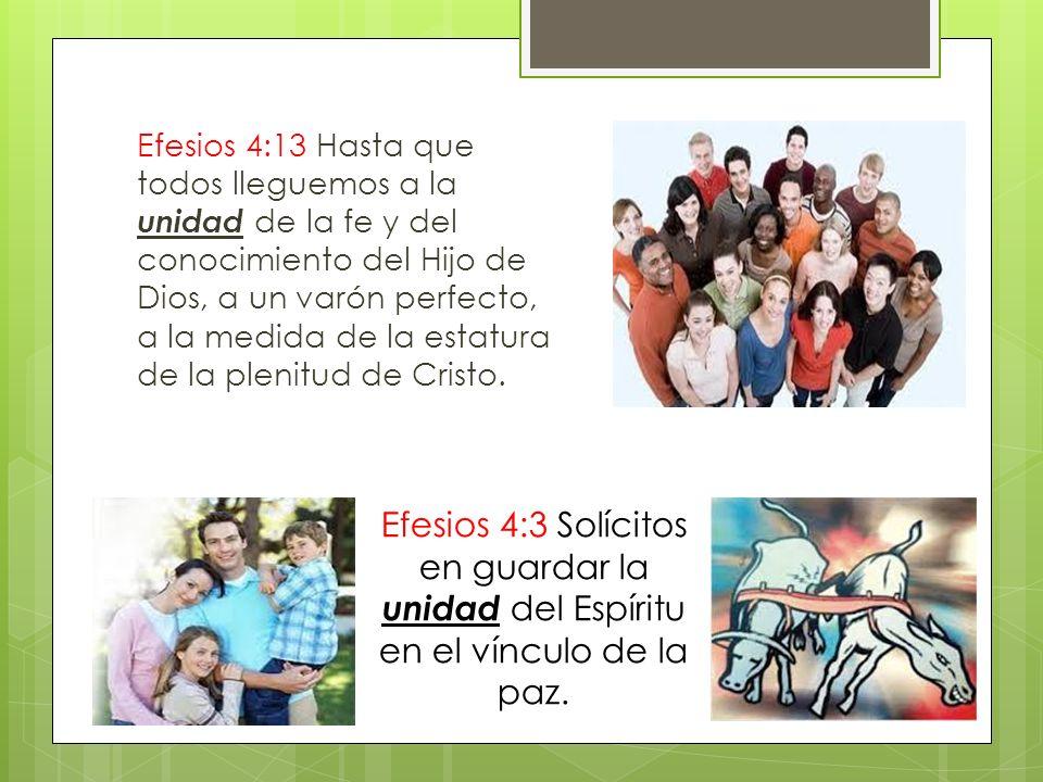Efesios 4:13 Hasta que todos lleguemos a la unidad de la fe y del conocimiento del Hijo de Dios, a un varón perfecto, a la medida de la estatura de la plenitud de Cristo.