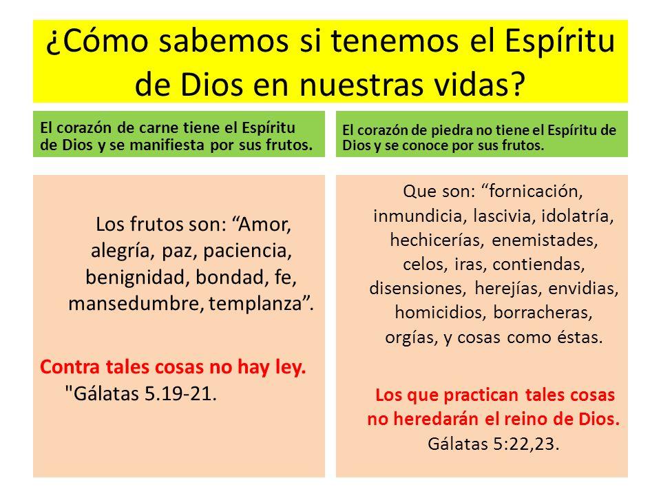¿Cómo sabemos si tenemos el Espíritu de Dios en nuestras vidas