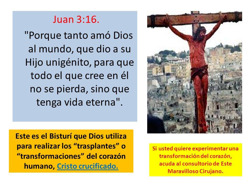 Juan 3:16. Porque tanto amó Dios al mundo, que dio a su Hijo unigénito, para que todo el que cree en él no se pierda, sino que tenga vida eterna .