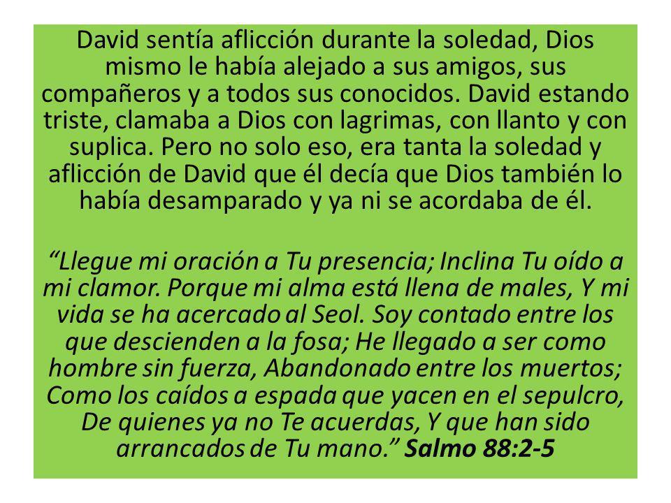 David sentía aflicción durante la soledad, Dios mismo le había alejado a sus amigos, sus compañeros y a todos sus conocidos.