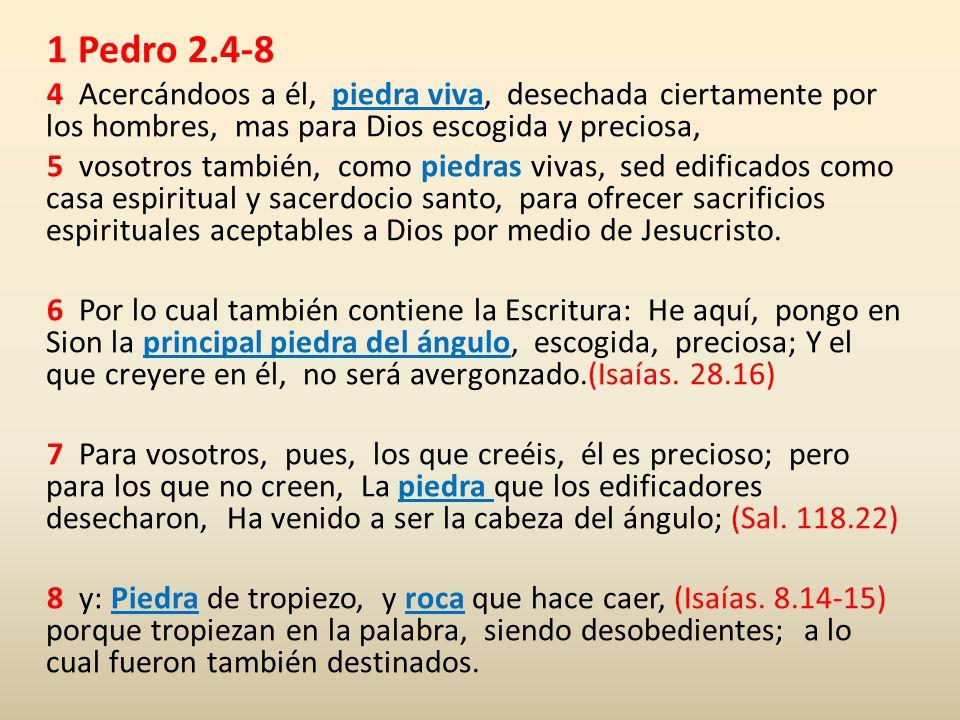 1 Pedro 2.4-8 4 Acercándoos a él, piedra viva, desechada ciertamente por los hombres, mas para Dios escogida y preciosa,