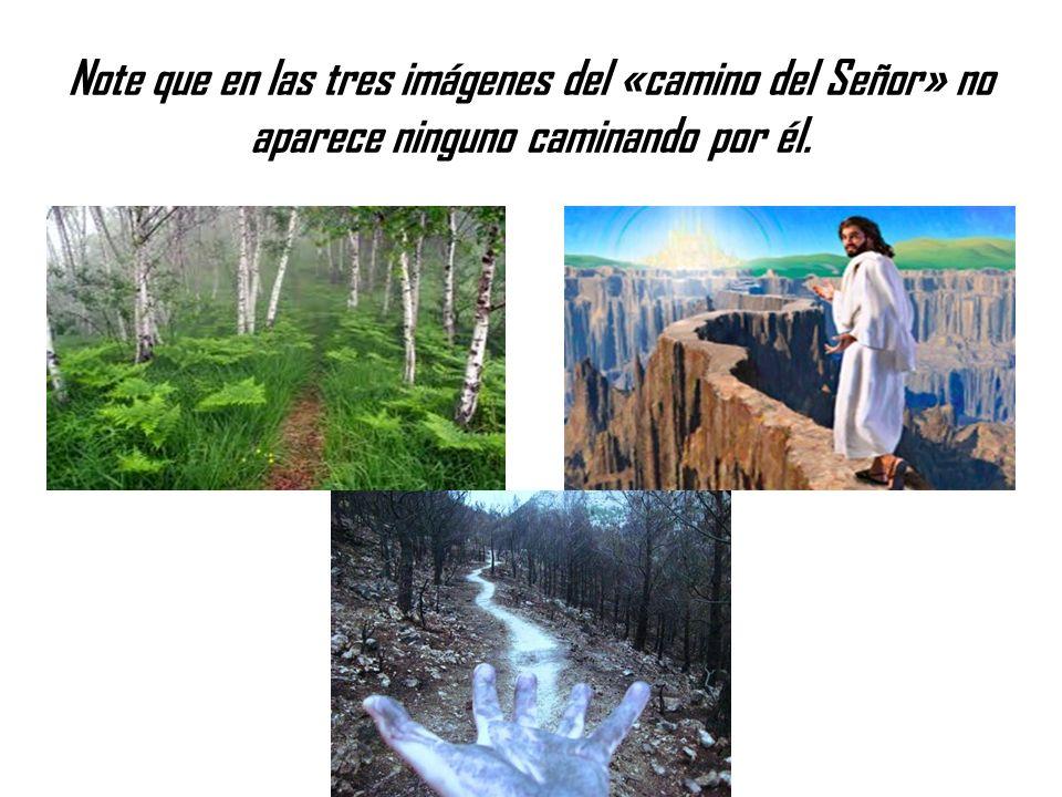 Note que en las tres imágenes del «camino del Señor» no aparece ninguno caminando por él.