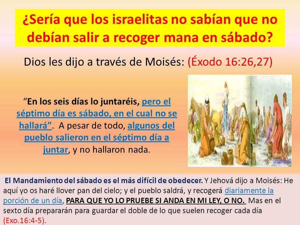 ¿Sería que los israelitas no sabían que no debían salir a recoger mana en sábado