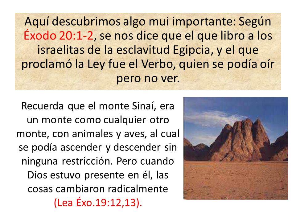 Aquí descubrimos algo mui importante: Según Éxodo 20:1-2, se nos dice que el que libro a los israelitas de la esclavitud Egipcia, y el que proclamó la Ley fue el Verbo, quien se podía oír pero no ver.