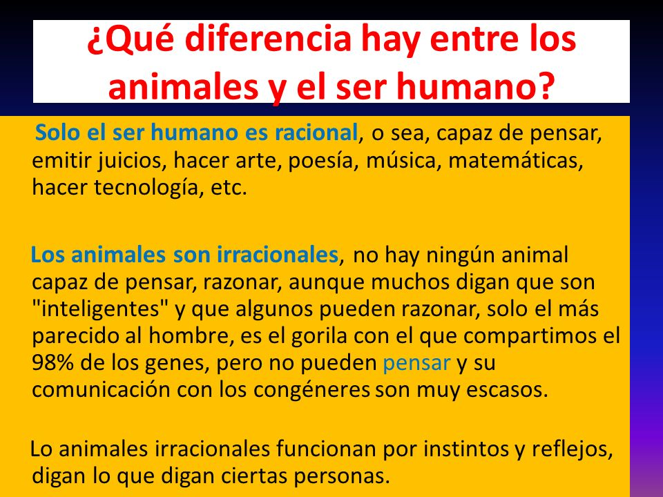 ¿Qué diferencia hay entre los animales y el ser humano