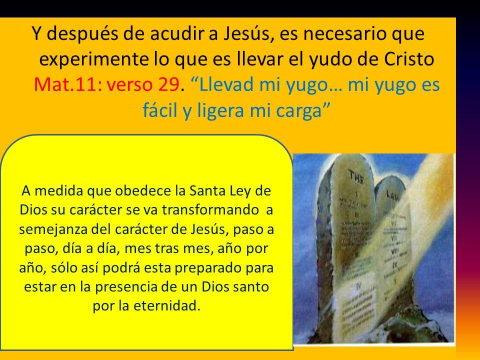 Y después de acudir a Jesús, es necesario que experimente lo que es llevar el yudo de Cristo Mat.11: verso 29. Llevad mi yugo… mi yugo es fácil y ligera mi carga