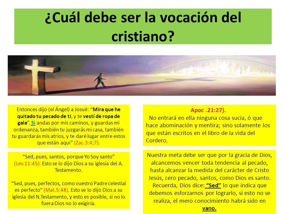 ¿Cuál debe ser la vocación del cristiano