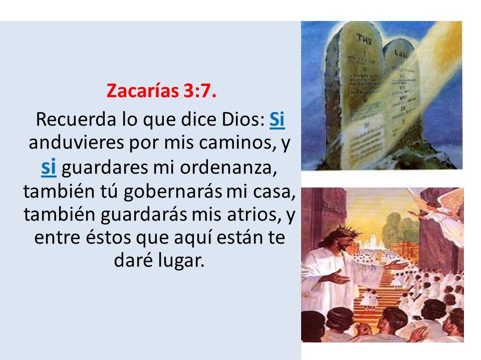 Zacarías 3:7.
