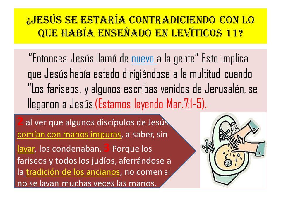 ¿Jesús se estaría contradiciendo con lo que había enseñado en Levíticos 11