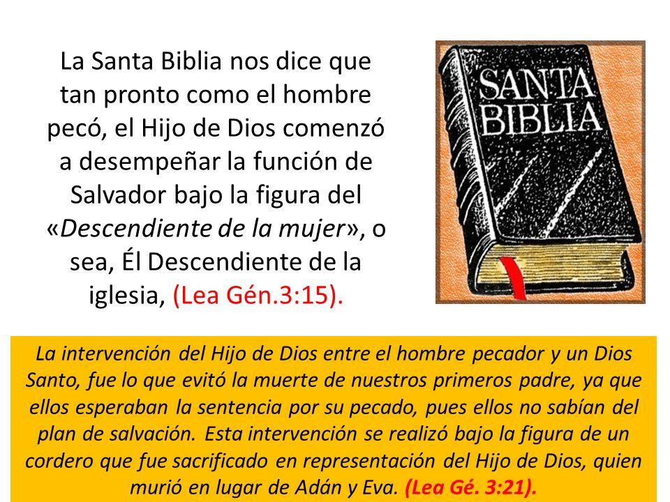La Santa Biblia nos dice que tan pronto como el hombre pecó, el Hijo de Dios comenzó a desempeñar la función de Salvador bajo la figura del «Descendiente de la mujer», o sea, Él Descendiente de la iglesia, (Lea Gén.3:15).