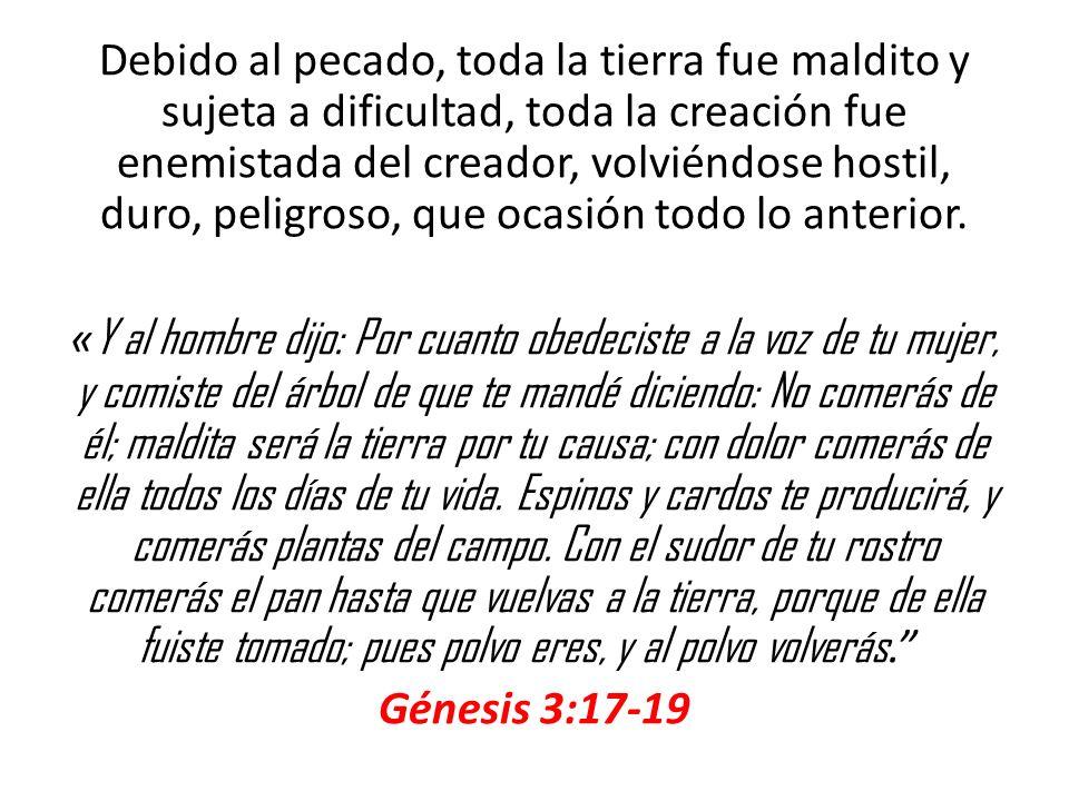 Debido al pecado, toda la tierra fue maldito y sujeta a dificultad, toda la creación fue enemistada del creador, volviéndose hostil, duro, peligroso, que ocasión todo lo anterior.