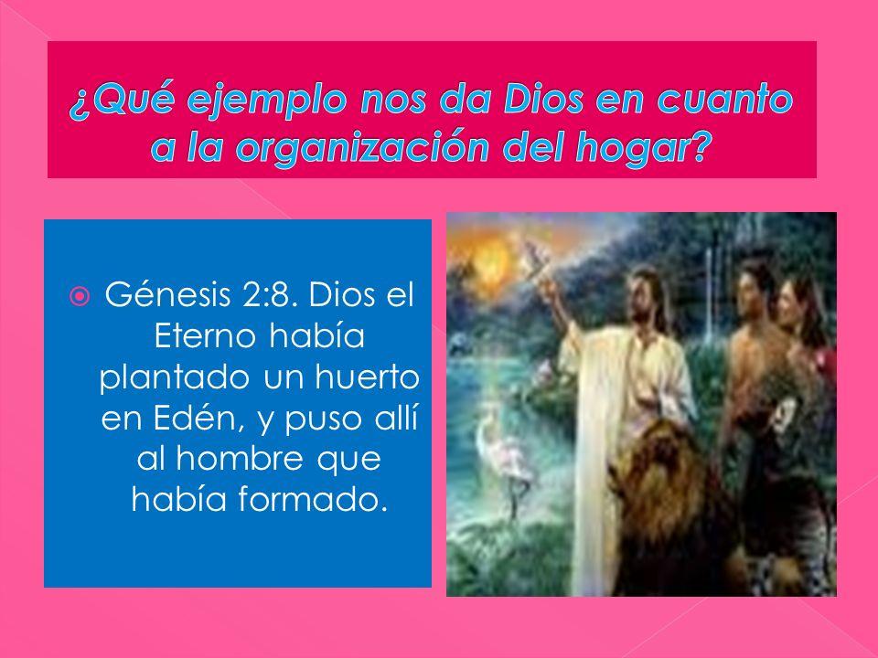 ¿Qué ejemplo nos da Dios en cuanto a la organización del hogar
