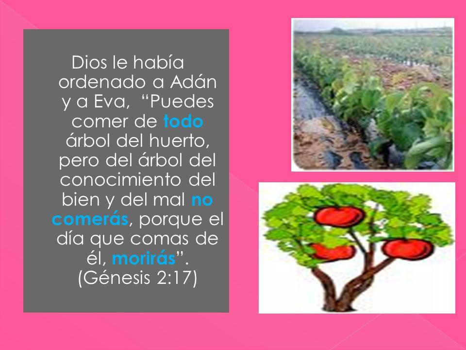 Dios le había ordenado a Adán y a Eva, Puedes comer de todo árbol del huerto, pero del árbol del conocimiento del bien y del mal no comerás, porque el día que comas de él, morirás .