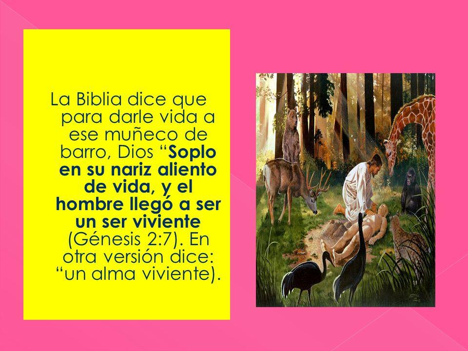 La Biblia dice que para darle vida a ese muñeco de barro, Dios Soplo en su nariz aliento de vida, y el hombre llegó a ser un ser viviente (Génesis 2:7).