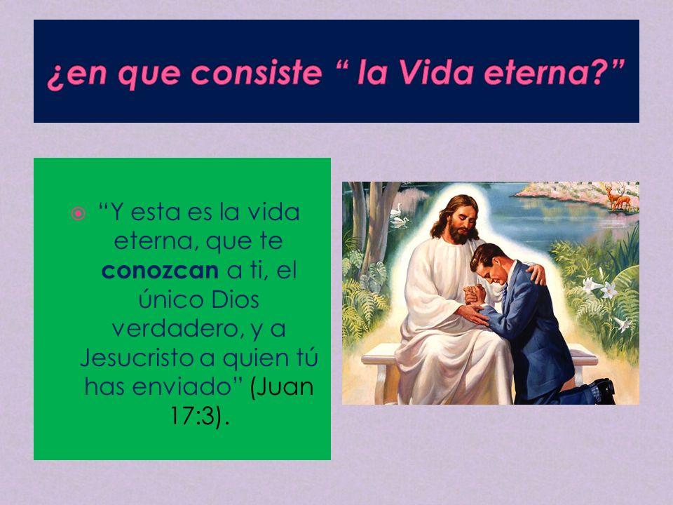 ¿en que consiste la Vida eterna