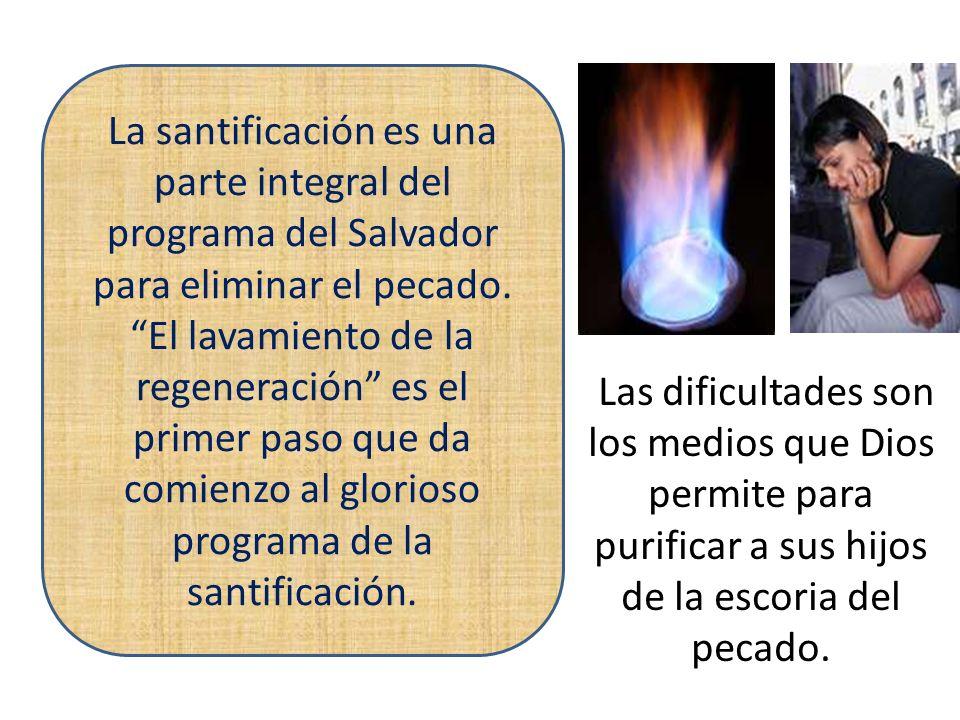 La santificación es una parte integral del programa del Salvador para eliminar el pecado. El lavamiento de la regeneración es el primer paso que da comienzo al glorioso programa de la santificación.