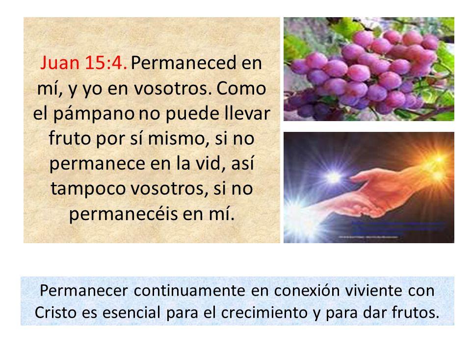 Juan 15:4. Permaneced en mí, y yo en vosotros