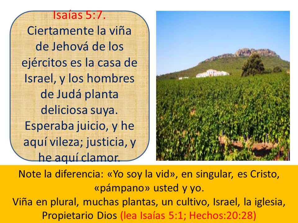 Isaías 5:7. Ciertamente la viña de Jehová de los ejércitos es la casa de Israel, y los hombres de Judá planta deliciosa suya. Esperaba juicio, y he aquí vileza; justicia, y he aquí clamor.