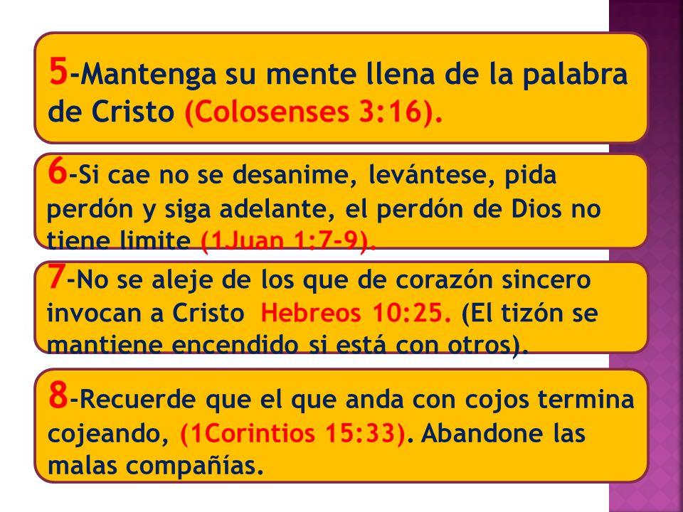 5-Mantenga su mente llena de la palabra de Cristo (Colosenses 3:16).