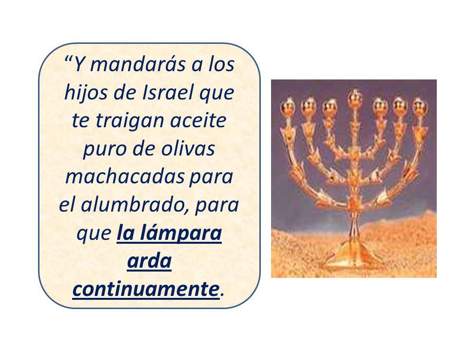 Y mandarás a los hijos de Israel que te traigan aceite puro de olivas machacadas para el alumbrado, para que la lámpara arda continuamente.