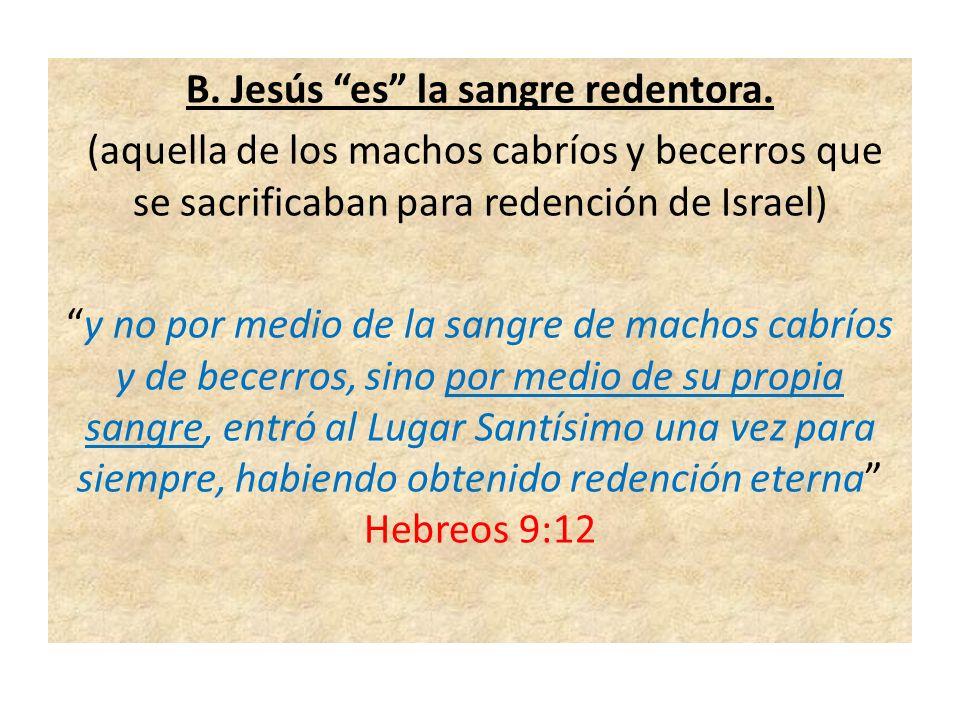 B. Jesús es la sangre redentora.