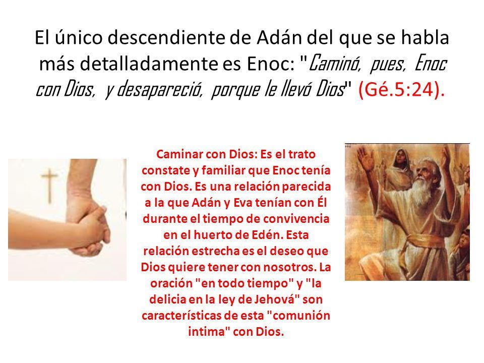 El único descendiente de Adán del que se habla más detalladamente es Enoc: Caminó, pues, Enoc con Dios, y desapareció, porque le llevó Dios (Gé.5:24).