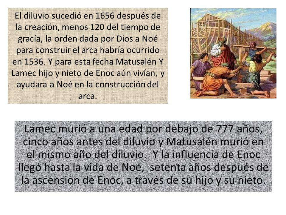 El diluvio sucedió en 1656 después de la creación, menos 120 del tiempo de gracía, la orden dada por Dios a Noé para construir el arca habría ocurrido en 1536. Y para esta fecha Matusalén Y Lamec hijo y nieto de Enoc aún vivían, y ayudara a Noé en la construcción del arca.