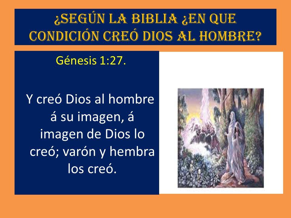 ¿Según la Biblia ¿En que condición creó Dios al hombre