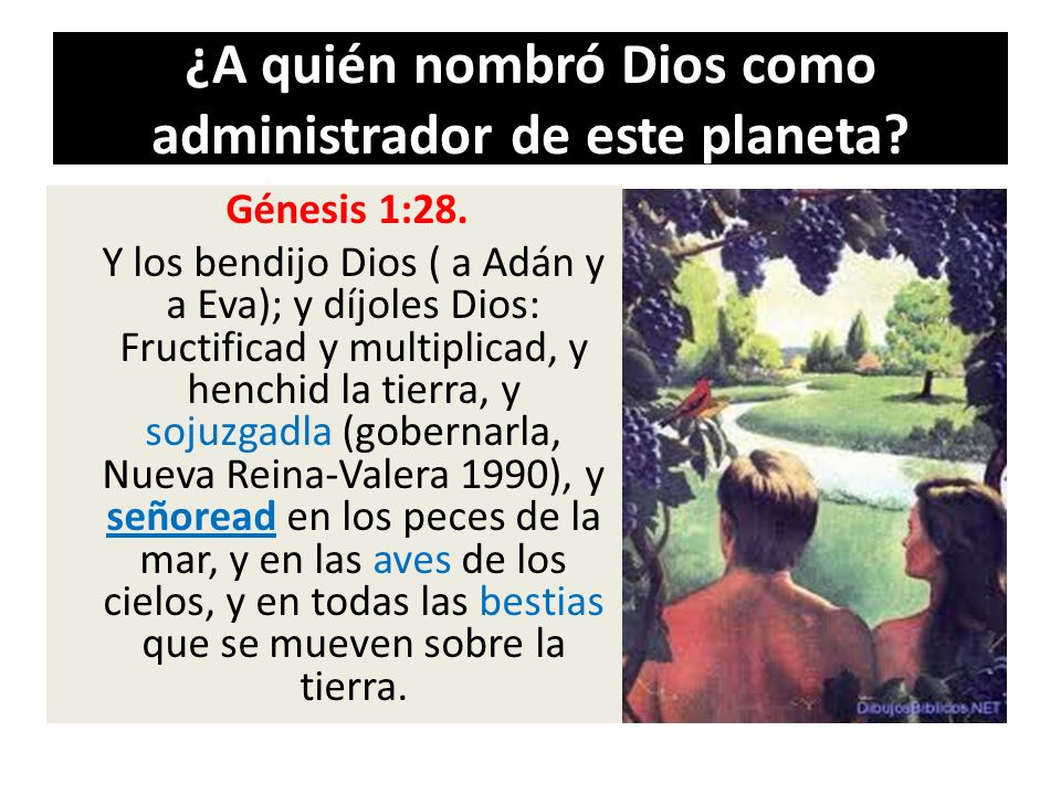 ¿A quién nombró Dios como administrador de este planeta
