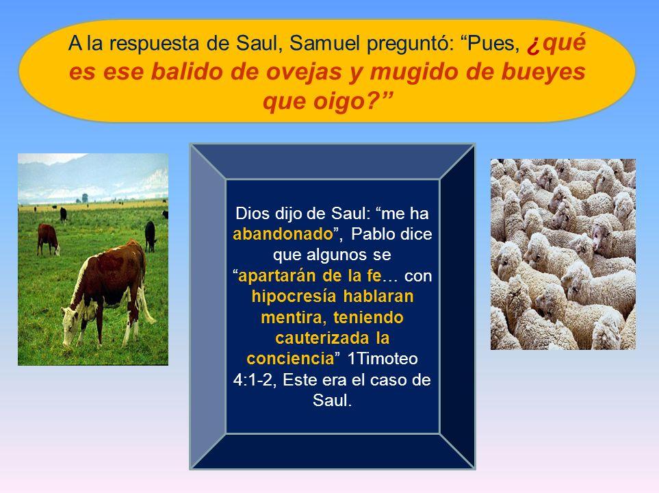 A la respuesta de Saul, Samuel preguntó: Pues, ¿qué es ese balido de ovejas y mugido de bueyes que oigo