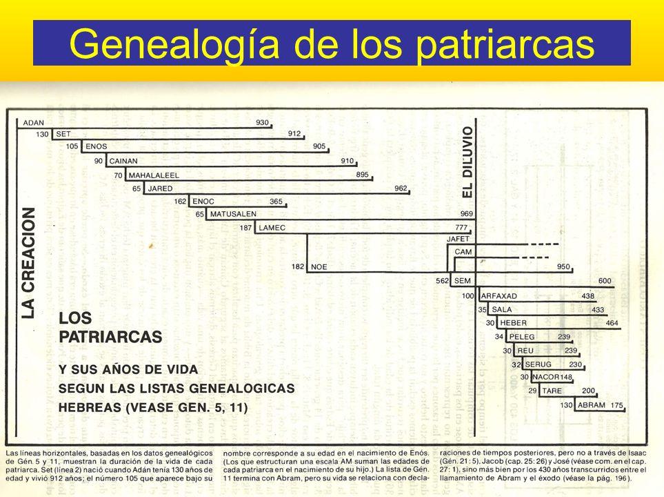 Genealogía de los patriarcas