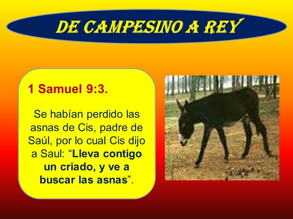 De campesino a rey 1 Samuel 9:3.