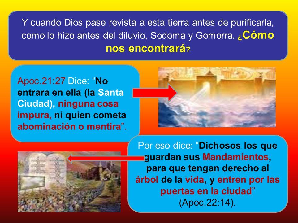Y cuando Dios pase revista a esta tierra antes de purificarla, como lo hizo antes del diluvio, Sodoma y Gomorra. ¿Cómo nos encontrará