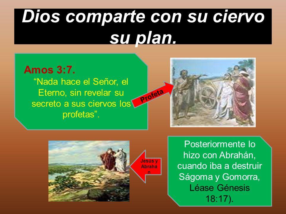 Dios comparte con su ciervo su plan.