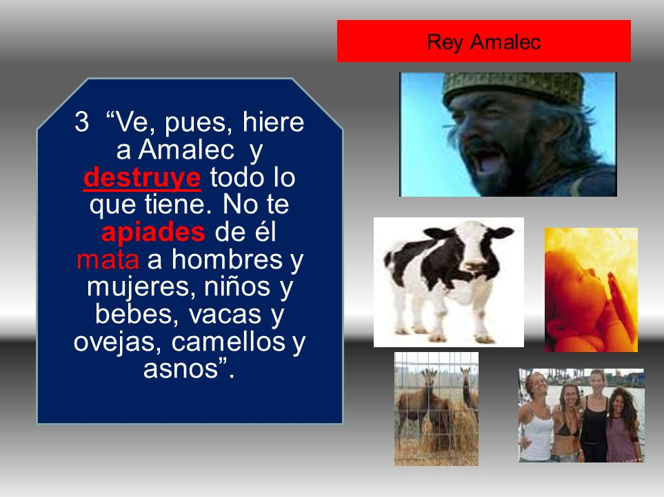 Rey Amalec