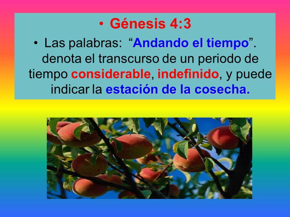 Génesis 4:3