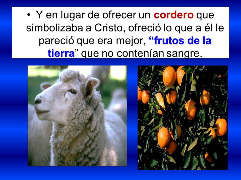 Y en lugar de ofrecer un cordero que simbolizaba a Cristo, ofreció lo que a él le pareció que era mejor, frutos de la tierra que no contenían sangre.