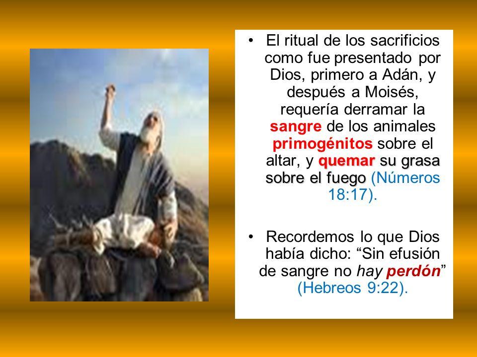 El ritual de los sacrificios como fue presentado por Dios, primero a Adán, y después a Moisés, requería derramar la sangre de los animales primogénitos sobre el altar, y quemar su grasa sobre el fuego (Números 18:17).