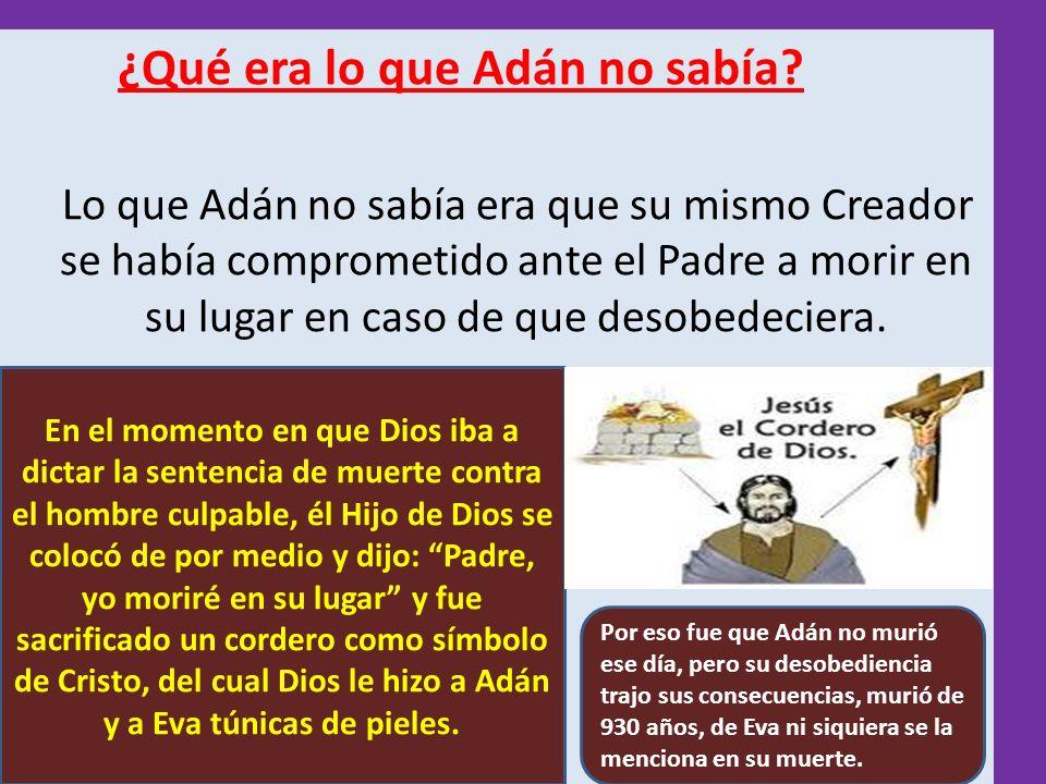 ¿Qué era lo que Adán no sabía