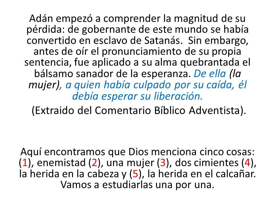 (Extraido del Comentario Bíblico Adventista).